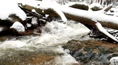 Fallen freeze tree in cold water. Cascade on small mountain stream - stock footage