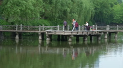 Bridge in a park in China Stock Footage