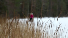 Racking focus shot of two skiers moving closer behind dried reeds at a frozen Stock Footage