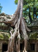 Angkor wat detail Stock Photos