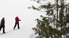 Recreative cross-country skiers passing by at a snowy landscape with racking Stock Footage