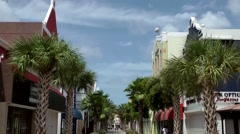 Aruba Oranjestad 017 see a long way into a palm alley in city center Stock Footage
