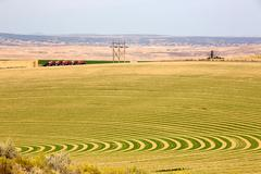 Farm with contoured planting for pivot irrigation Stock Photos