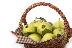 Group of guava fruit,tropical fruit Stock Photos