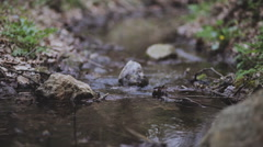 Cloudy spring mountain river Stock Footage