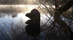Lake with early morning fog Stock Footage