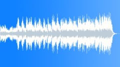 Digitiphony D2D13 Stock Music