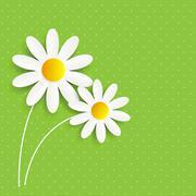 Flora Daisyl Design Vector Illustartion - stock illustration