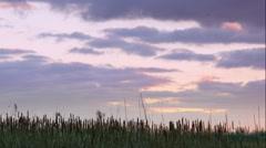 Purple sunset Stock Footage