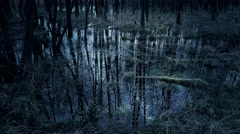 4k Dark moor with mirroring trees and clouds on water Stock Footage