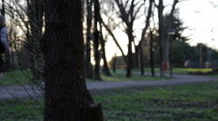 Running at sunset in the park- low depth of field Stock Footage
