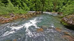 River in Caucasus mountains forest, near lake Ritsa, Abkhazia, Georgia Stock Footage