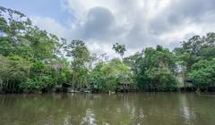 Amazon forest and wooden houses built for anaconda film - stock photo