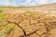Surface crack of  soil in arid area Stock Photos