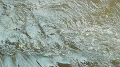 The rapids of the river Stock Footage
