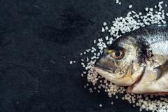 Dorada fish head - stock photo