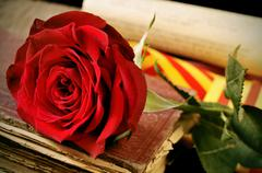 Closeup of a red rose and the catalan flag on an old book for Sant Jordi, the Stock Photos