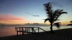 Wooden bridge and the palm tree on the beach near the ocean, sunrise - stock footage
