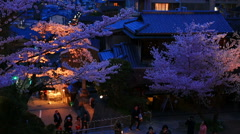 Evening. People walk in the cherry blossom season in Kyoto, Kiyomizu Temple. Stock Footage