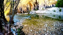 Tranquil creek in the forest and limestone rocks in the spring Stock Footage