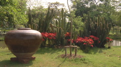 Cactuses at Ancient Siam Park in Samut Prakan Province, Thailand Stock Footage