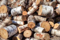 Pile of birch firewood Stock Photos