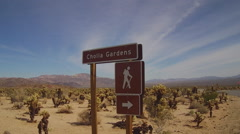 Cholla Gardens Sign And Desert Valley- JTNP Stock Footage