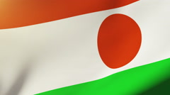 Niger flag waving in the wind. Looping sun rises style.  Animation loop Stock Footage