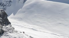 Ibex in snowy landcape Stock Footage