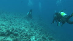 Local Divers Swimming at Blue Corner - PALAU Stock Footage