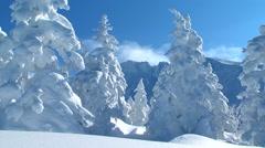 Snow in Hokkaido, Japan - stock footage