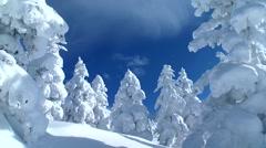 Snow in Hokkaido, Japan Stock Footage