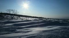 Drifting Snow, Hokkaido, Japan Stock Footage