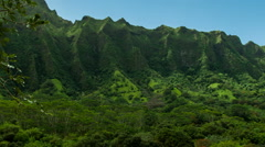 KaneOhe Forest Reserve pan right zoom Stock Footage