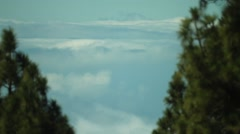 Clouds under Tenerife pine forest Stock Footage