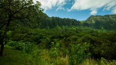 KaneOhe Forest Reserve pan with clouds and sky Stock Footage
