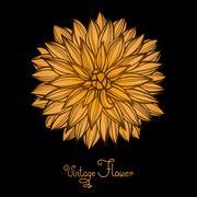 Bright Dahlia Flower Isolated for design - stock illustration