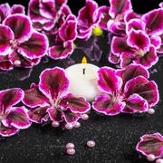 beautiful spa concept of blooming dark purple geranium flower, beads and cand - stock photo