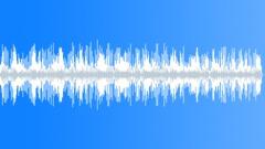 Crickets Forest 2 - sound effect