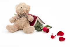 Bear red rose and one good book to read Stock Photos