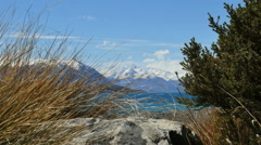 New Zealand Lake Tekapo grass blows with water behind Stock Footage