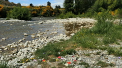New Zealand question mark stones and fake flowers by river Stock Footage