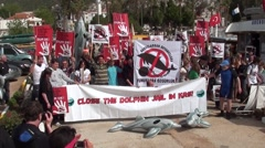 Manifestation with slogans for freedom to dolphins 3 - stock footage