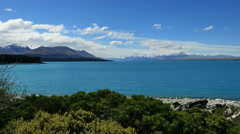 New Zealand Lake Pukaki blue water and wavering shrubs Stock Footage