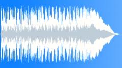 Texas Roadhouse Boggie Blues 15 sec edit - stock music