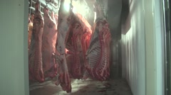 Stock Video Footage of carcasses in the refrigeration compartment.mp4