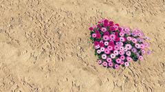 Heart-shaped flower-garden among a desert - stock illustration
