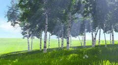 Birch grove edge in spring Stock Illustration