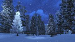 Winter night in the snowbound pinewood - stock photo