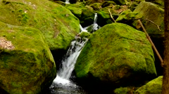 Cascade on small mountain stream, water is running between boulders Stock Footage